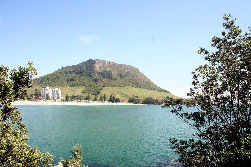 Mount_Manganui